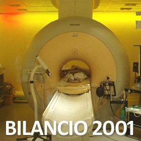Bilancio Anno 2001