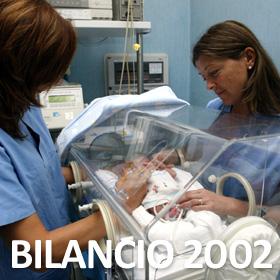 Bilancio Anno 2002