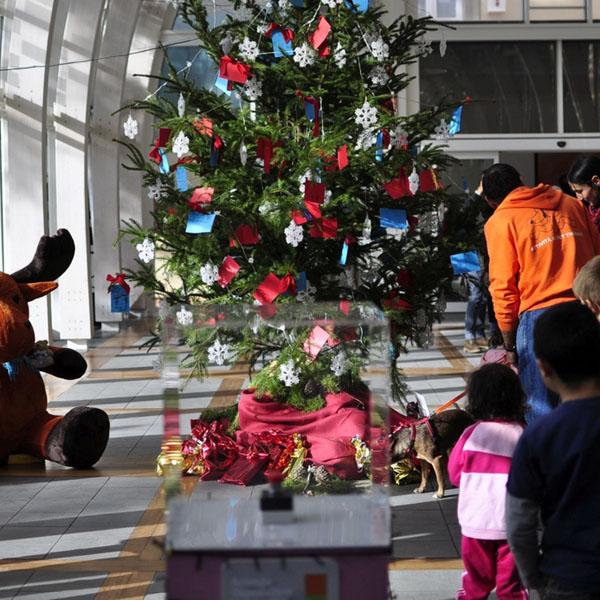 Al Meyer abbiamo acceso l'albero di Natale