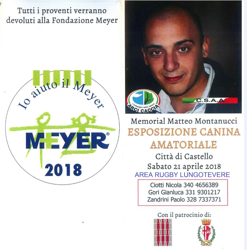 Memorial Matteo Montanucci