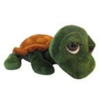 Scorza la tartaruga-10