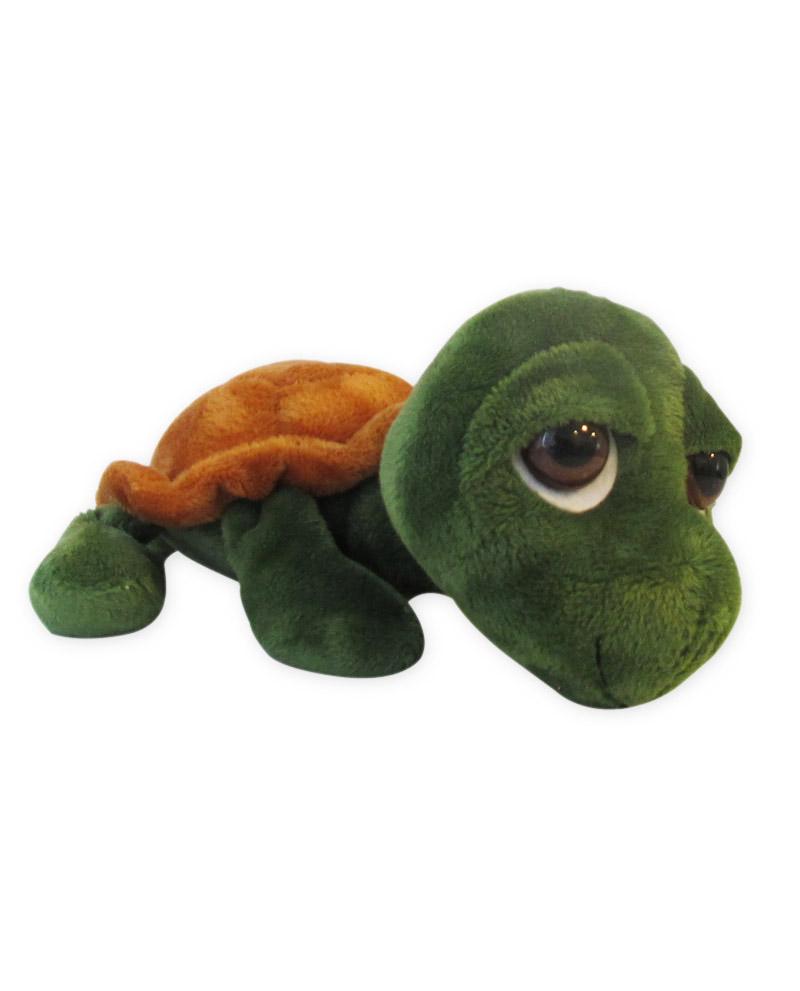 Scorza la tartaruga